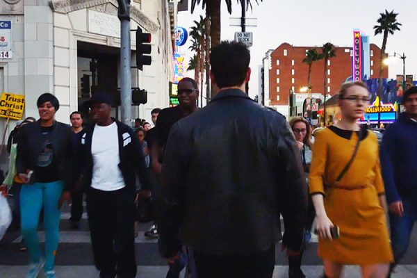 Hollywood bvd Terminator