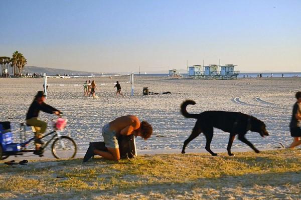 Venice Beach boardwalk saltimbanque